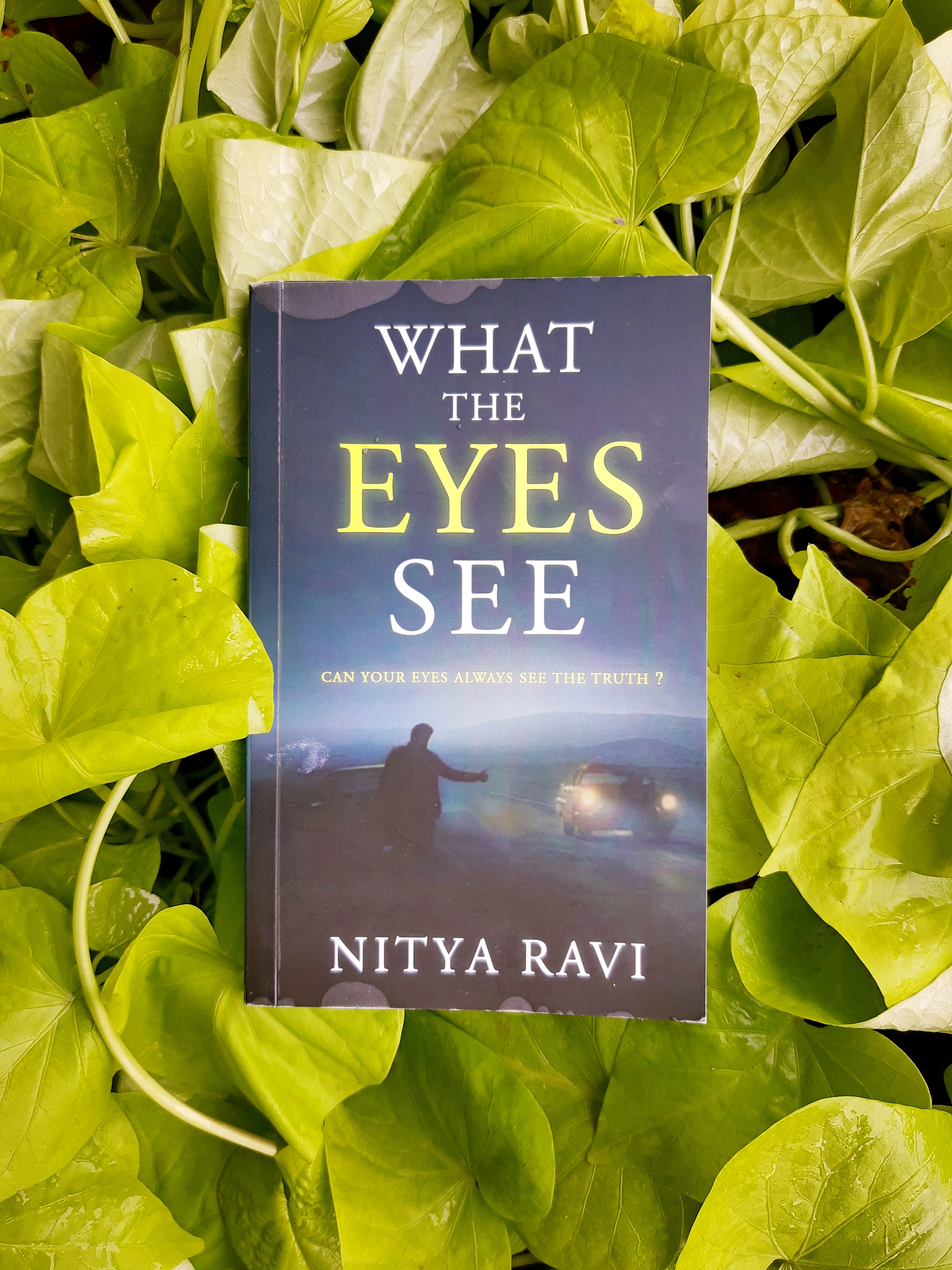 Book Review-What The Eyes Seeby NityaRavi